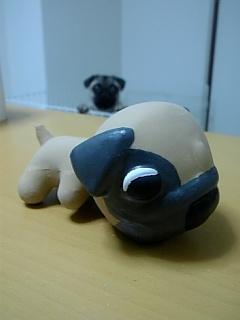 THE DOG パグ
