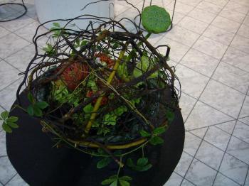 2008国境のない花たち展 023s