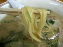 ふくちゃんラーメンの麺