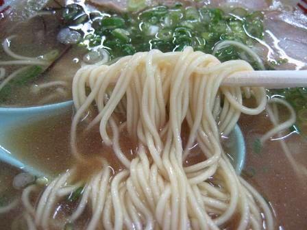 達磨 細麺