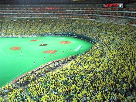 黄色一色に染まるスタンド