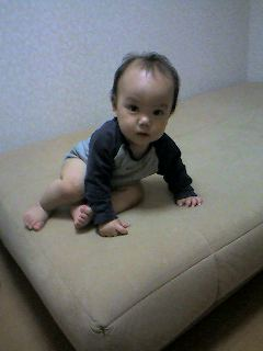 yuzu-oriru1.jpg