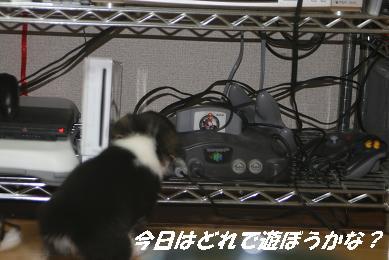 G_0662.jpg