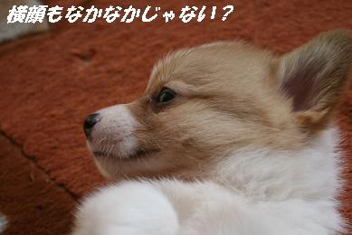 G_0669.jpg