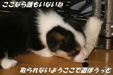 G_0708.jpg