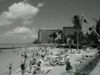 白黒写真がフルカラーに見える錯覚画像