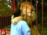 ライオンと抱き合ってキス