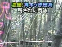激撮!青木ヶ原樹海 残された痕跡