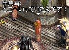 LinC6732.jpg