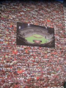 カープカレンダー2010