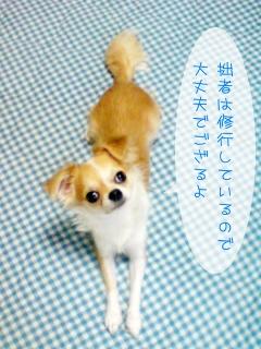 goemon485.jpg
