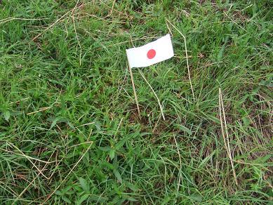 japanflag23082006.jpg