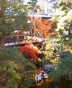 池とその上を通る渡り廊下