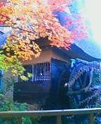 池の脇にある水車小屋