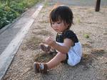 honoha_niwa.jpg