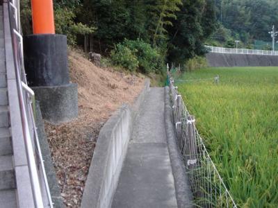 2006-09-03001.jpg