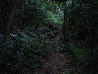 2006-09-03002.jpg
