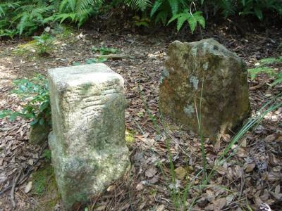 2006-09-17-028.jpg