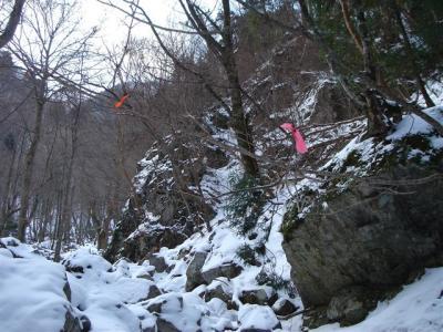 2007-01-13021.jpg