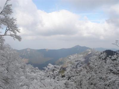 2007-01-13059.jpg