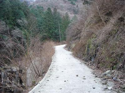 2007-01-20-003.jpg