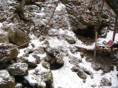 2007-01-20-042.jpg