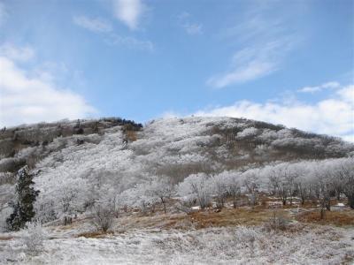 2007-01-20-097.jpg