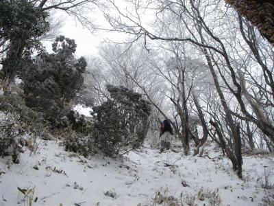 2007-02-04-150.jpg