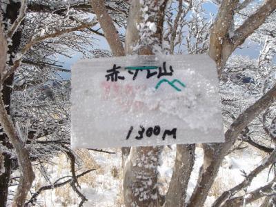 2007-02-04-206.jpg