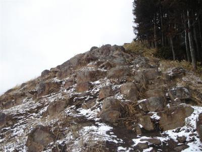 2007-02-11-104.jpg