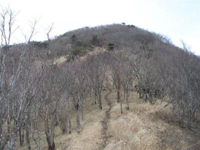 2007-02-17-112.jpg