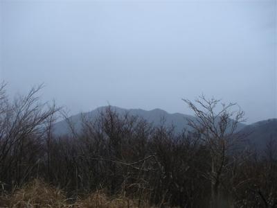 2007-02-17-272.jpg