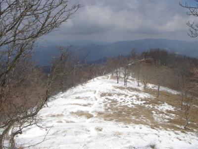 2007-03-18-129.jpg