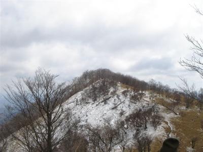 2007-03-18-159.jpg