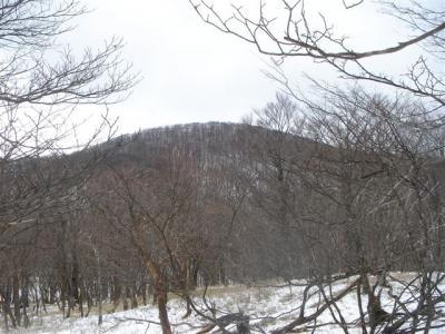 2007-03-18-230.jpg