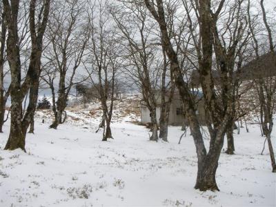 2007-03-18-237.jpg