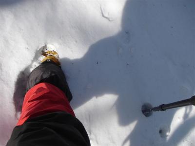 2007-03-23-061.jpg