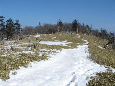 2007-03-23-141.jpg
