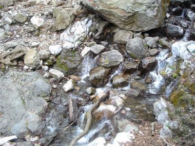 2007-04-15-293.jpg