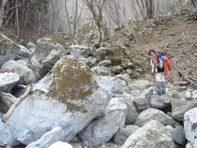 2007-04-15-314.jpg