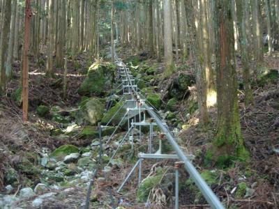 2007-04-20-022.jpg