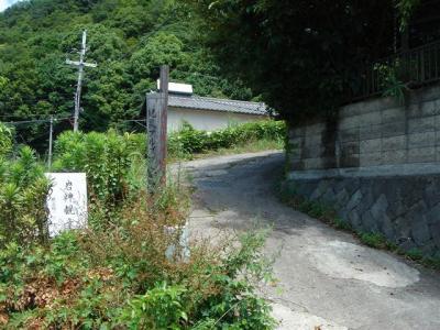 2007-06-23-001.jpg