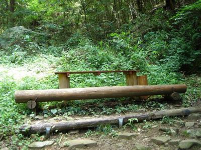 2007-06-23-007.jpg