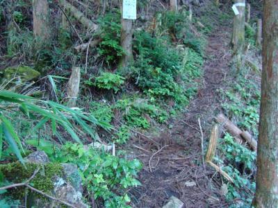 2007-08-16-006.jpg