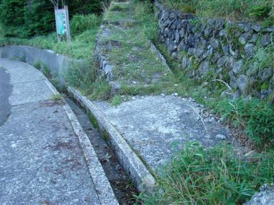 2007-09-08-033.jpg