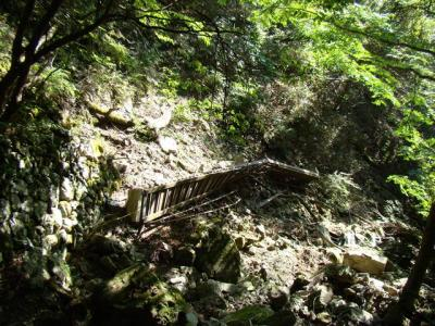 2007-09-08-070.jpg