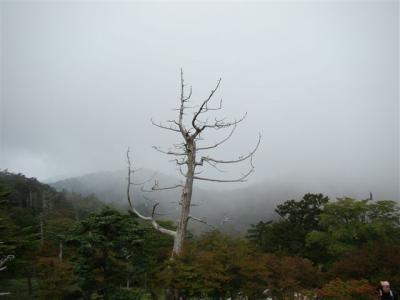 2007-09-23-055.jpg
