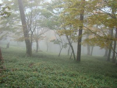 2007-10-20-086.jpg