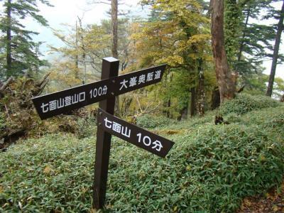 2007-10-20-091.jpg