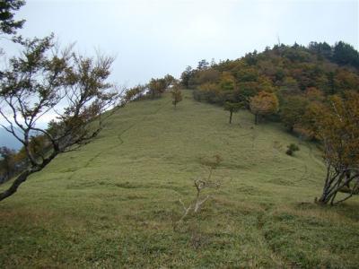 2007-10-20-136.jpg
